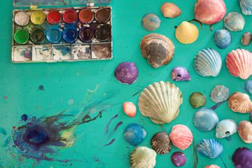 Painted seashells ready for crafts