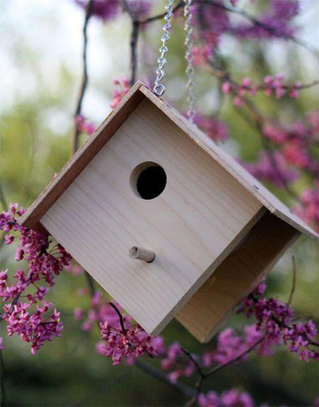 15 DIY Birdhouse Plans and Ideas Bird House Plans And Diions on