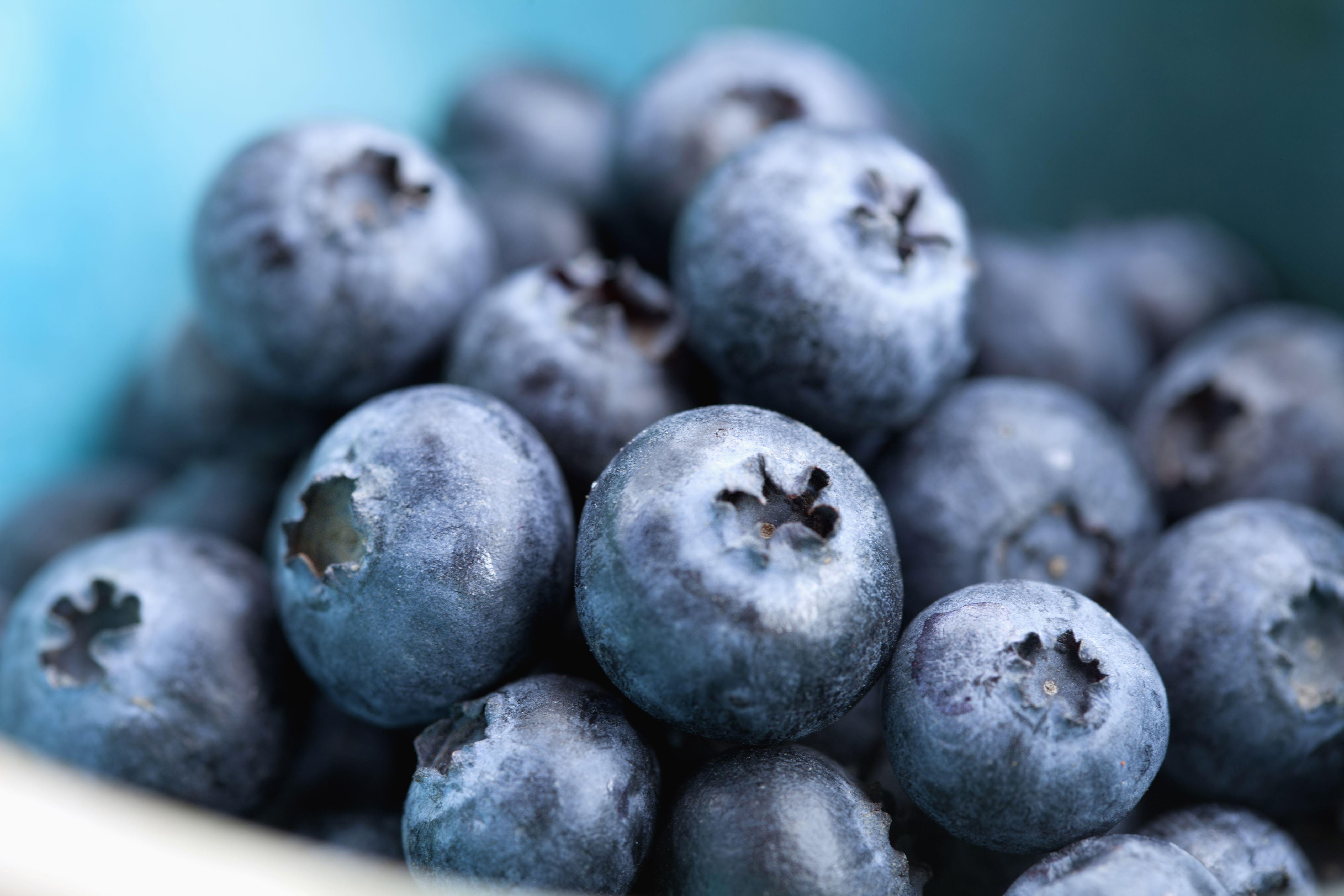 Studio Shot of blueberries