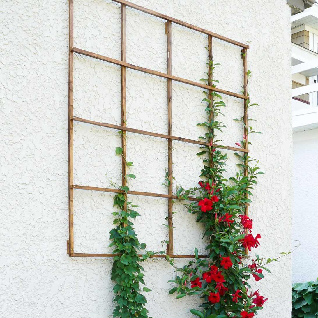 DIY Modern Garden Trellis