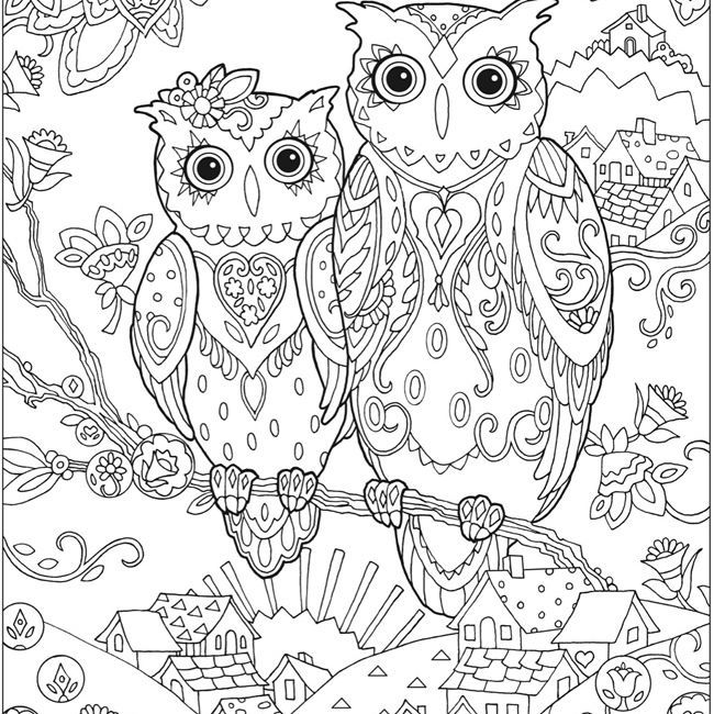 free owl coloring pages for adults from dover publications