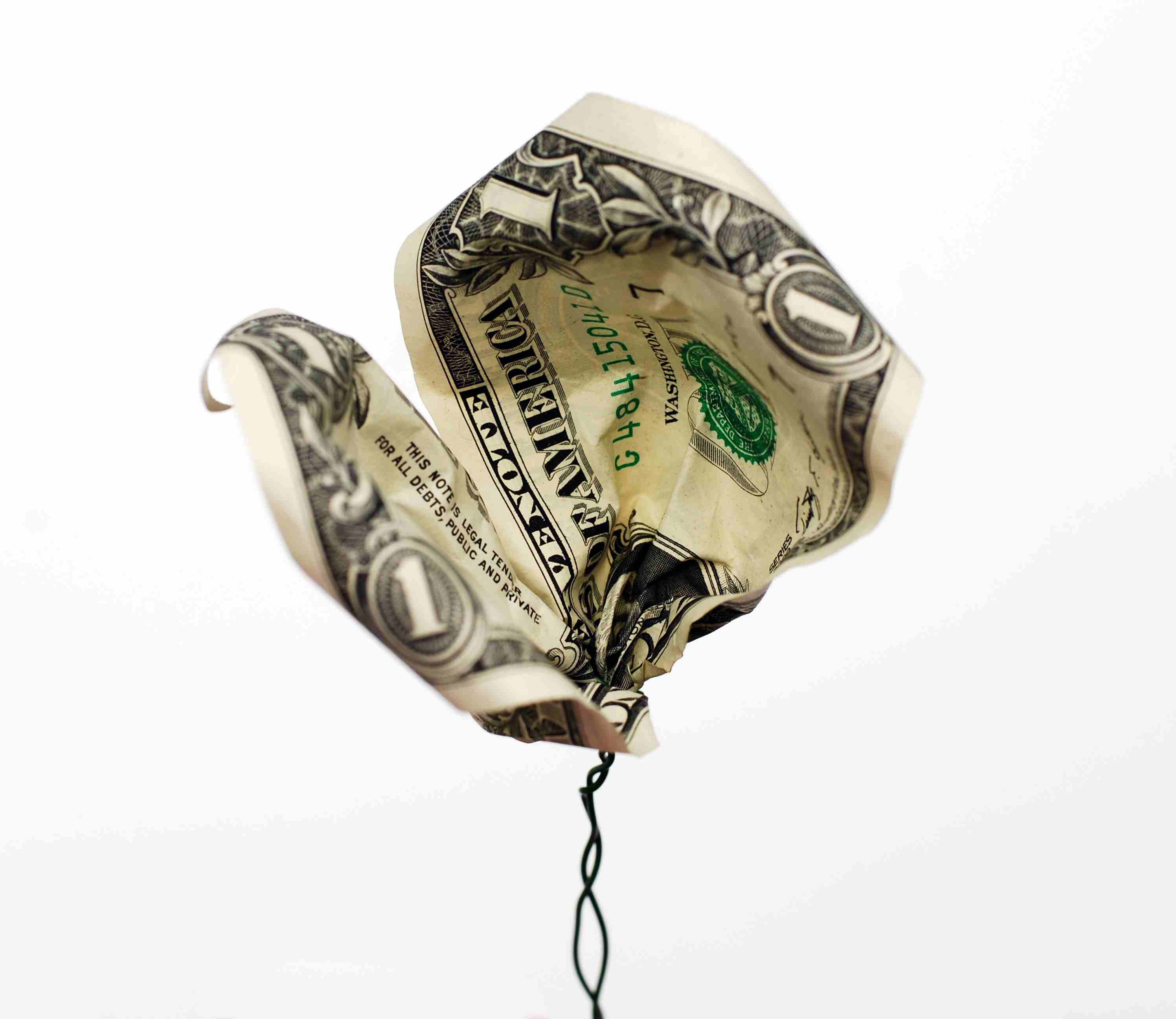 Dollar bill attached to floral wire