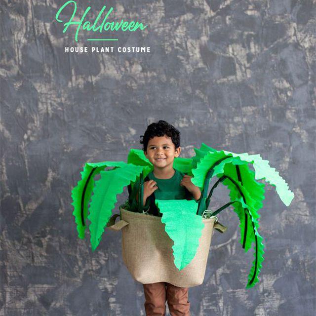 houseplant costume