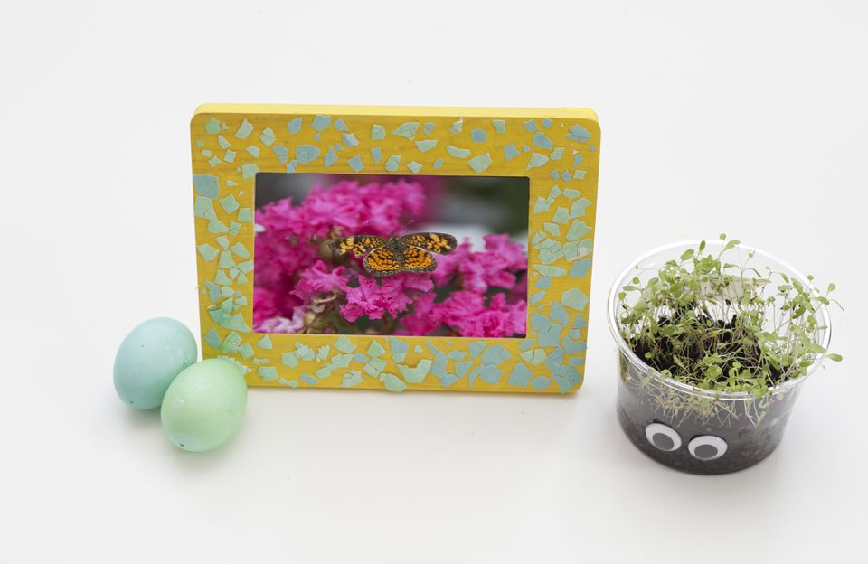 DIY Egg shell Frame Art
