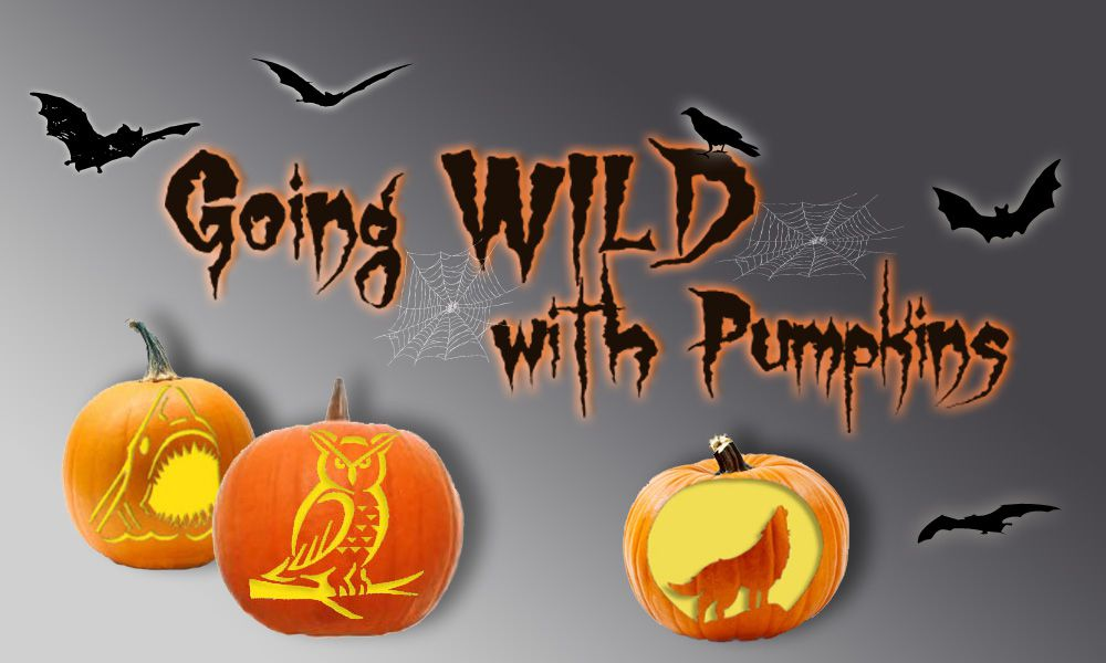 Free Pumpkin Carving Patterns And Templates For Halloween Awesome Animal Pumpkin Carving Patterns