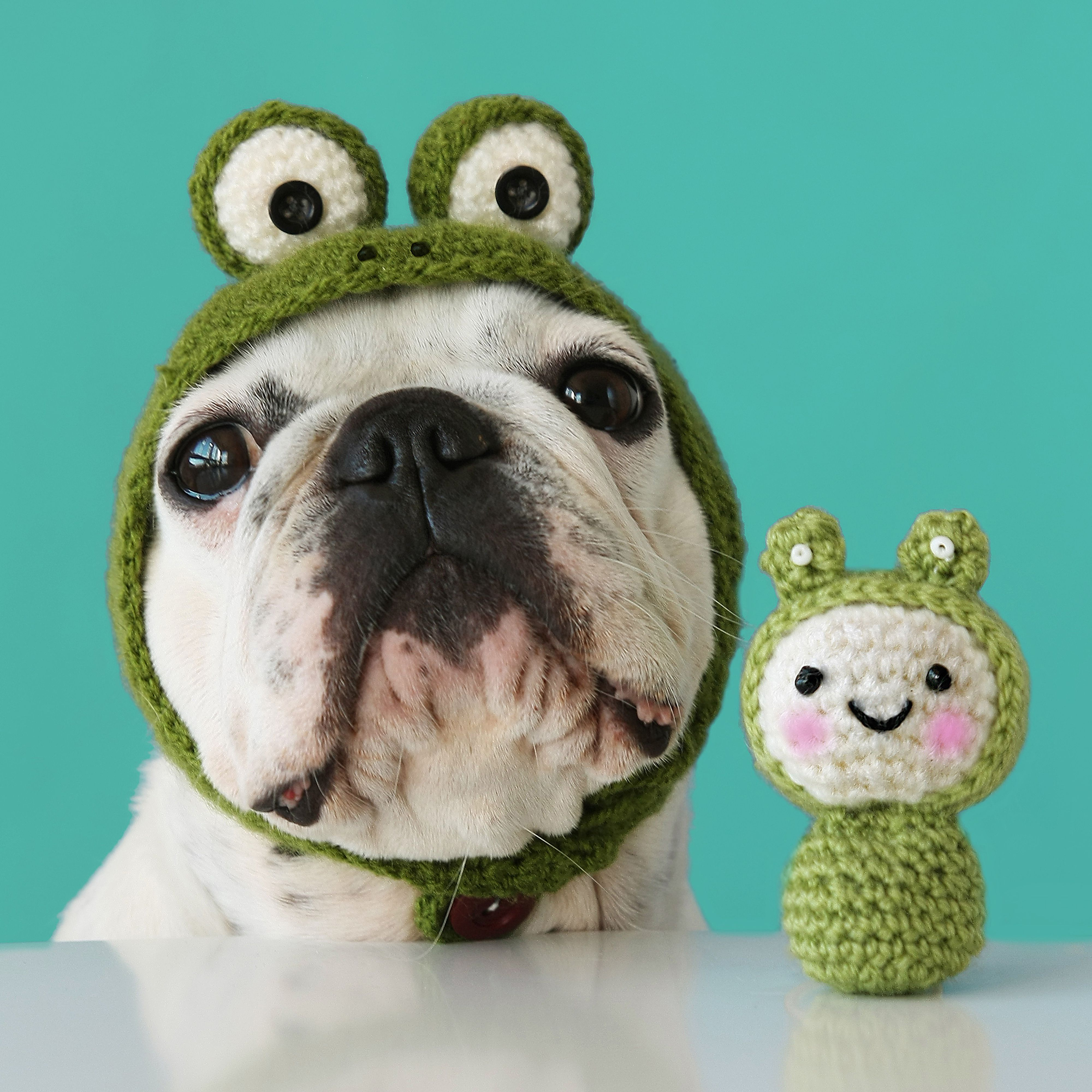 Dog doll and frog hats, made with crochet