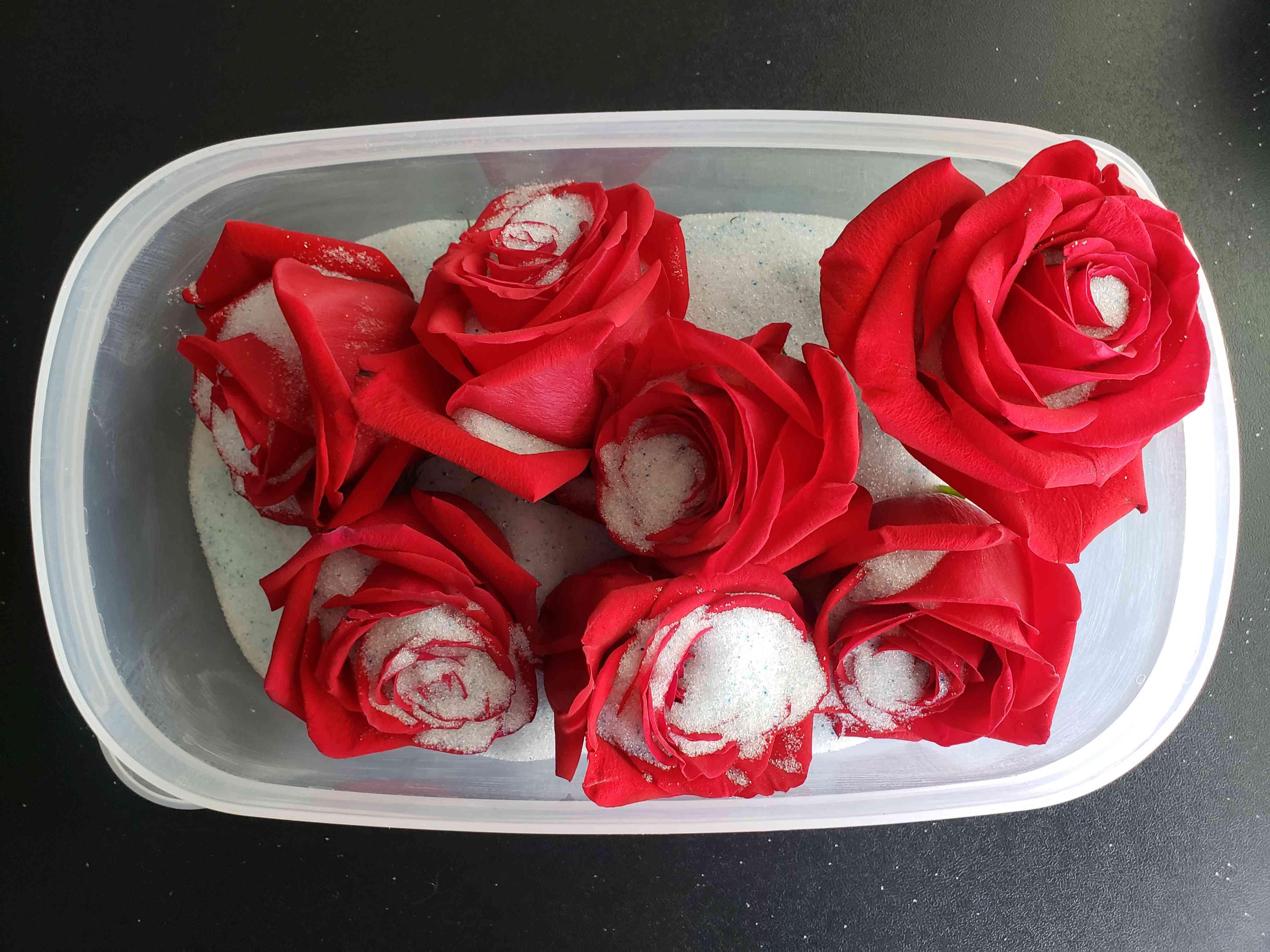Preserve Roses