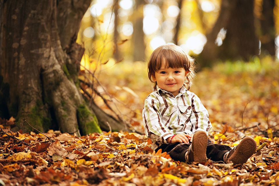 boy sitting on a carpet made of dried yellow leaves, in the forest in a sunny autumn day