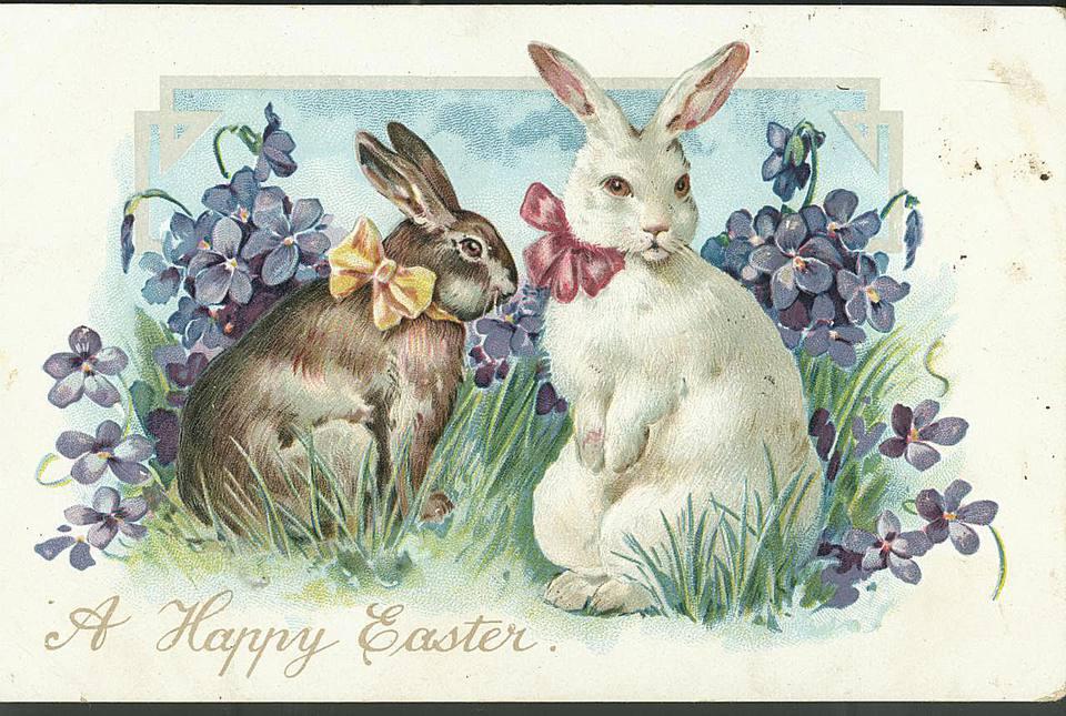национальным открытки пасхальные с кроликами входе