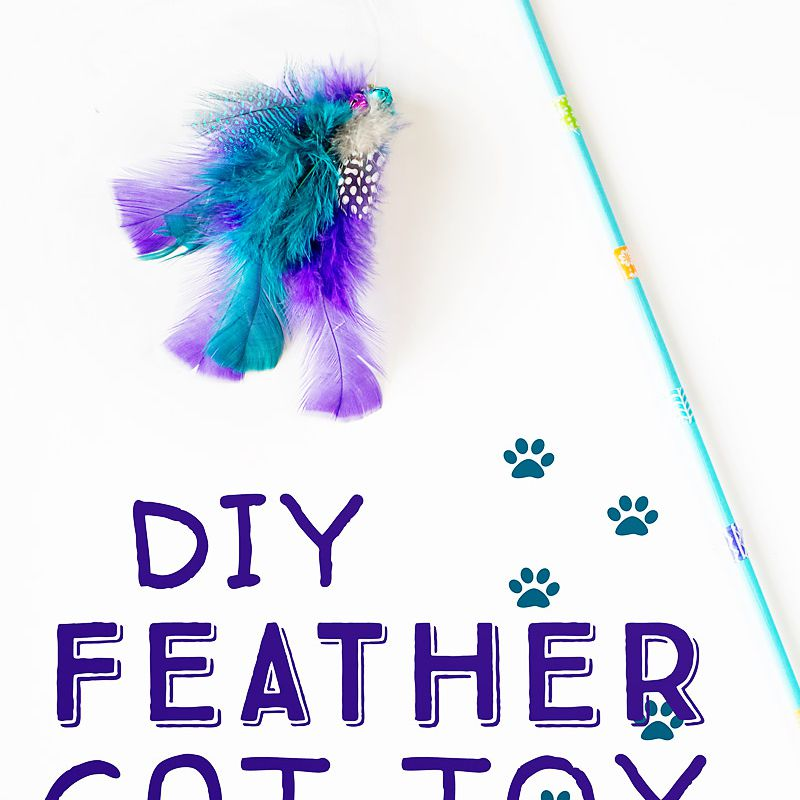 diy feather wand toy