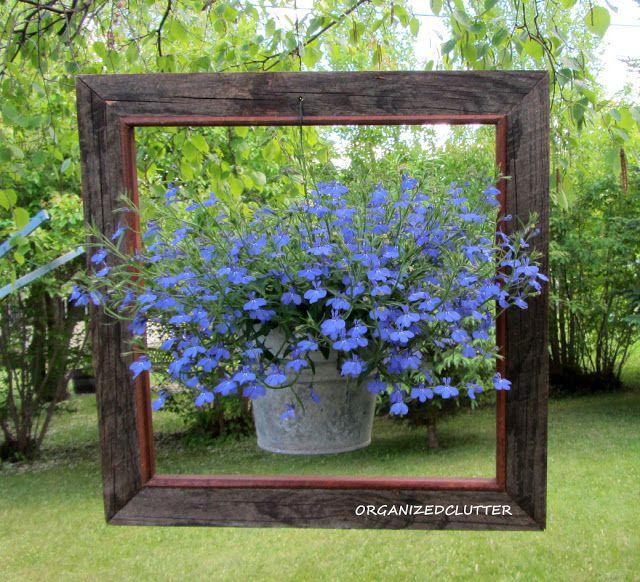 Framed hanging planter
