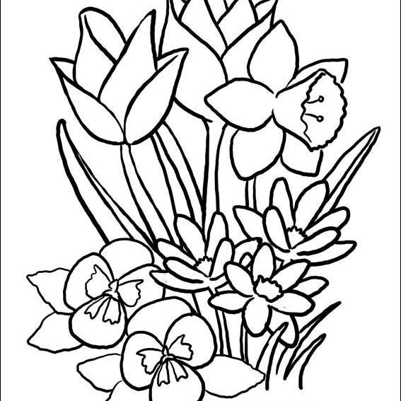 14 Places To Find Free, Printable Spring Coloring Pages