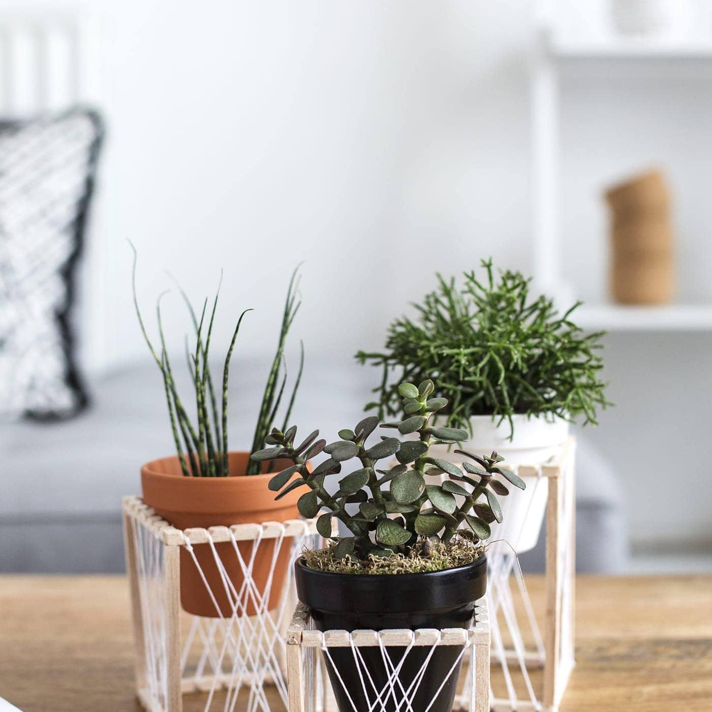 13 Free Diy Plant Stand Plans