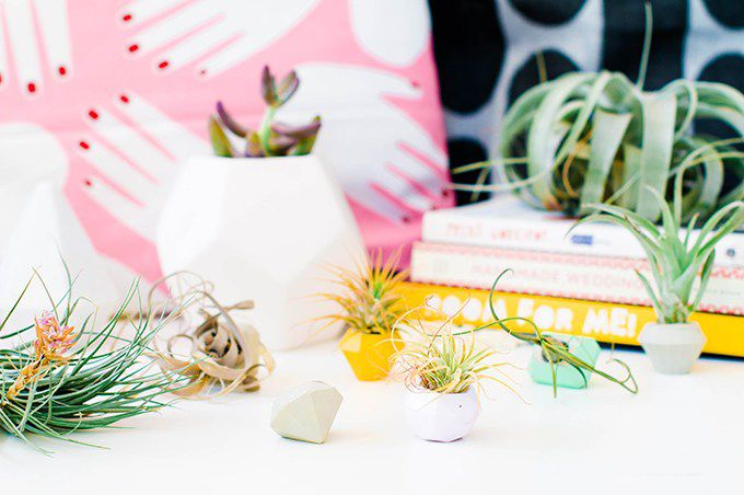 Gem-shaped concrete air plant planters