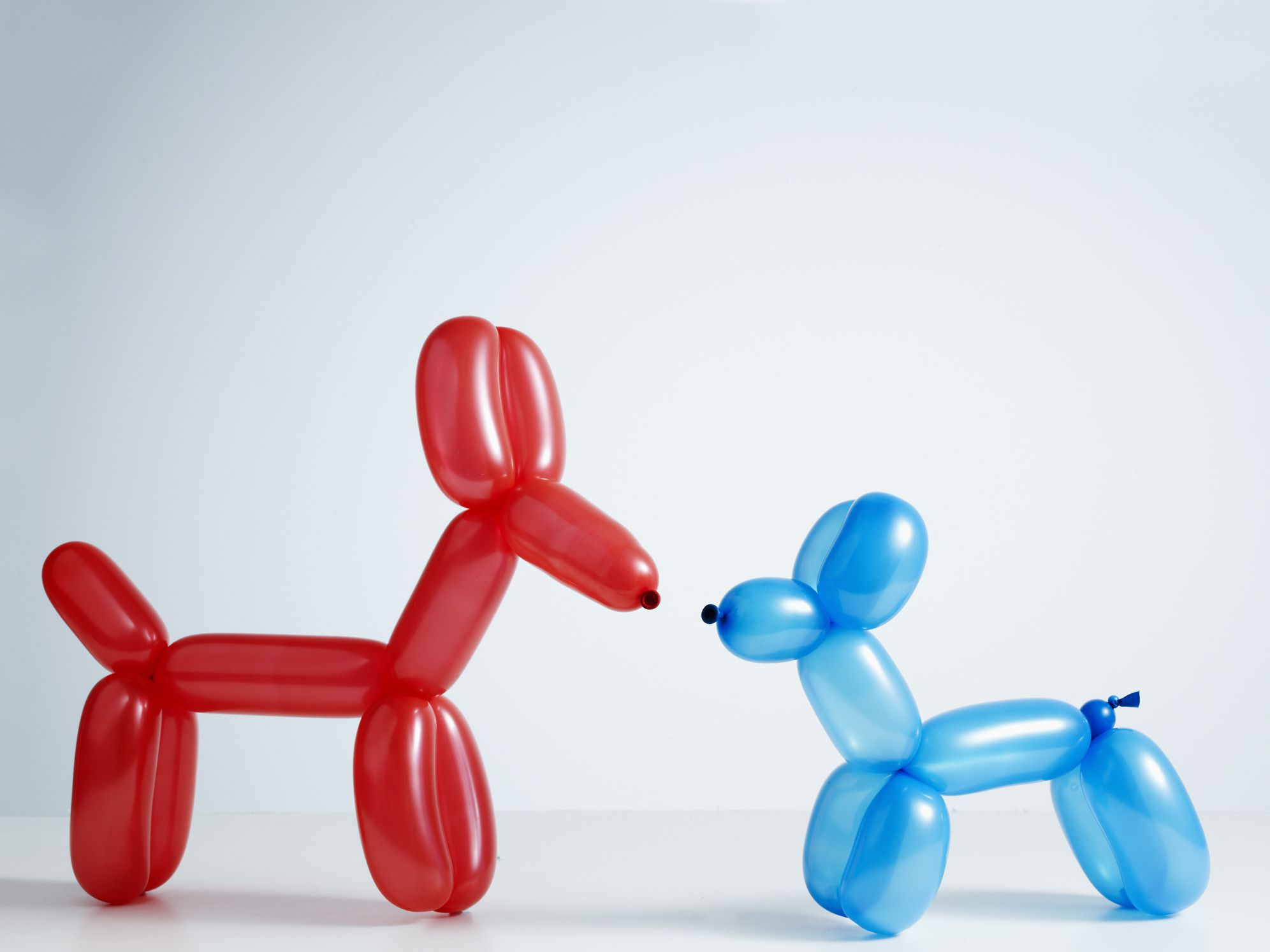 How To Make Balloon Animals For Beginners