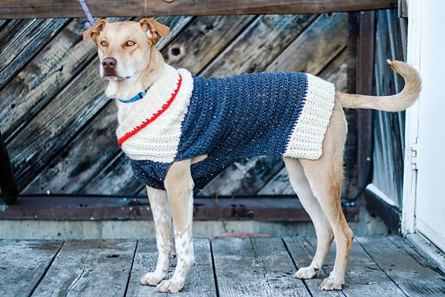 11 Free Crochet Patterns For Dog Sweaters