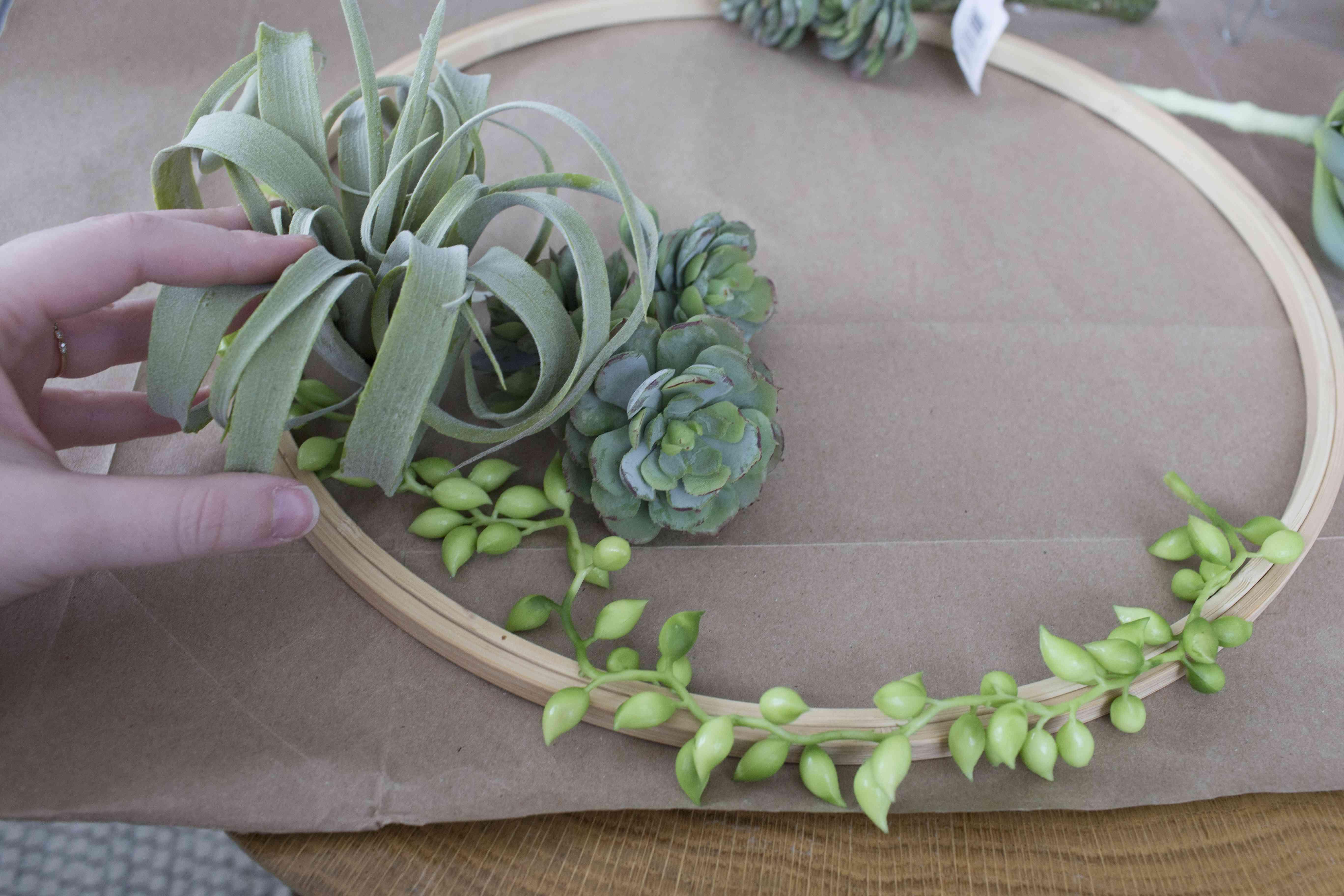 Planning succulent wreath design
