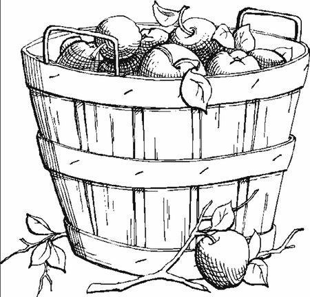 A Basket Of Apples Coloring Book Fun