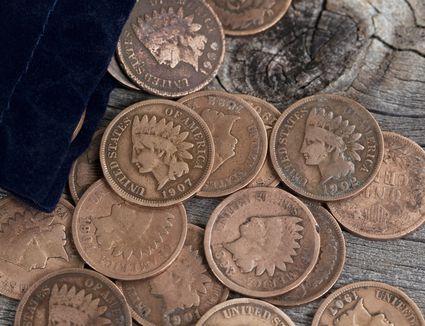 Various Indian head pennies