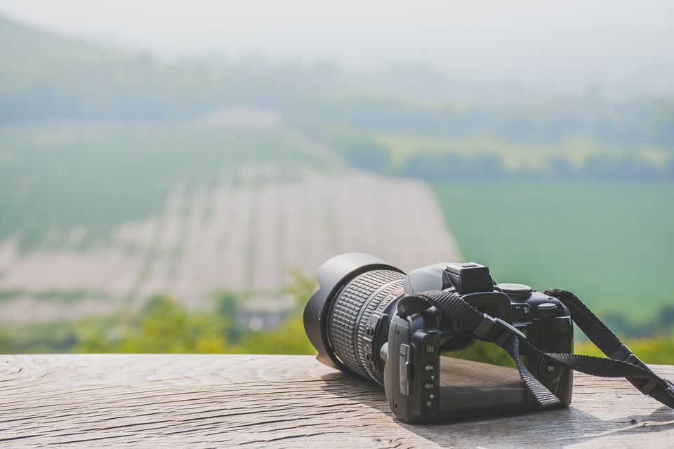 Camera On Retaining Wall By Landscape