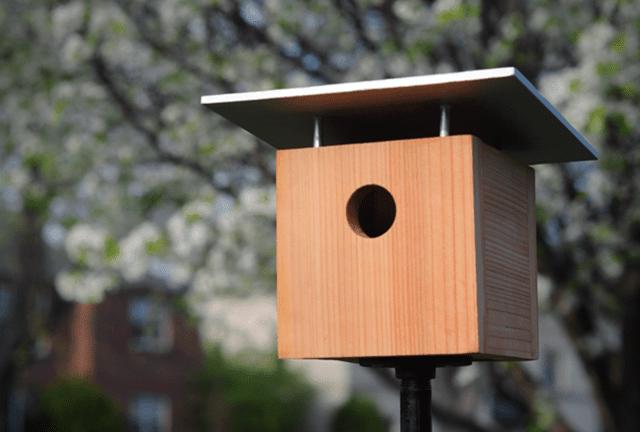 How to make a modern birdhouse