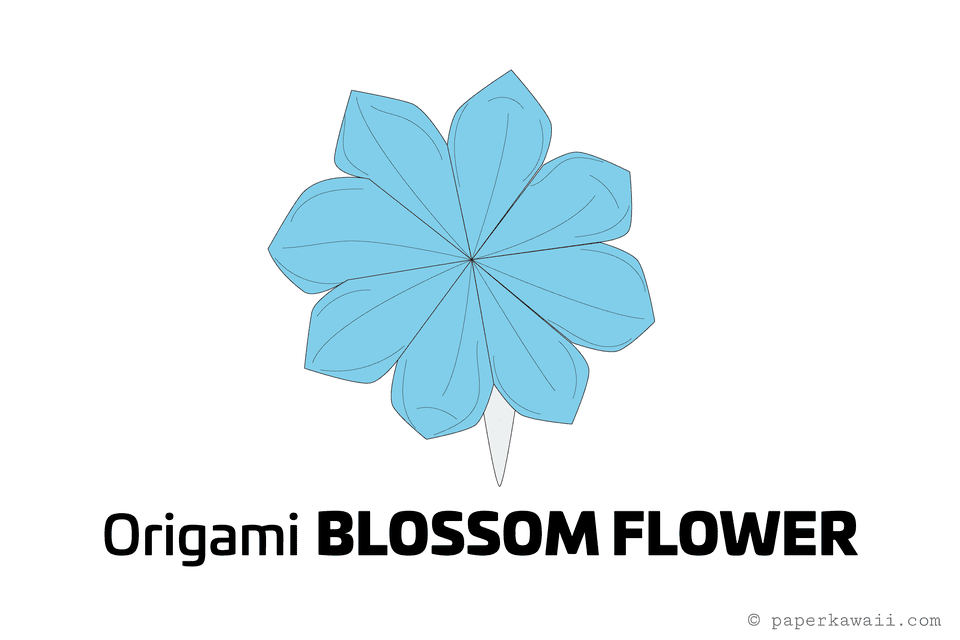 Origami Blossom Flower Diagram 01