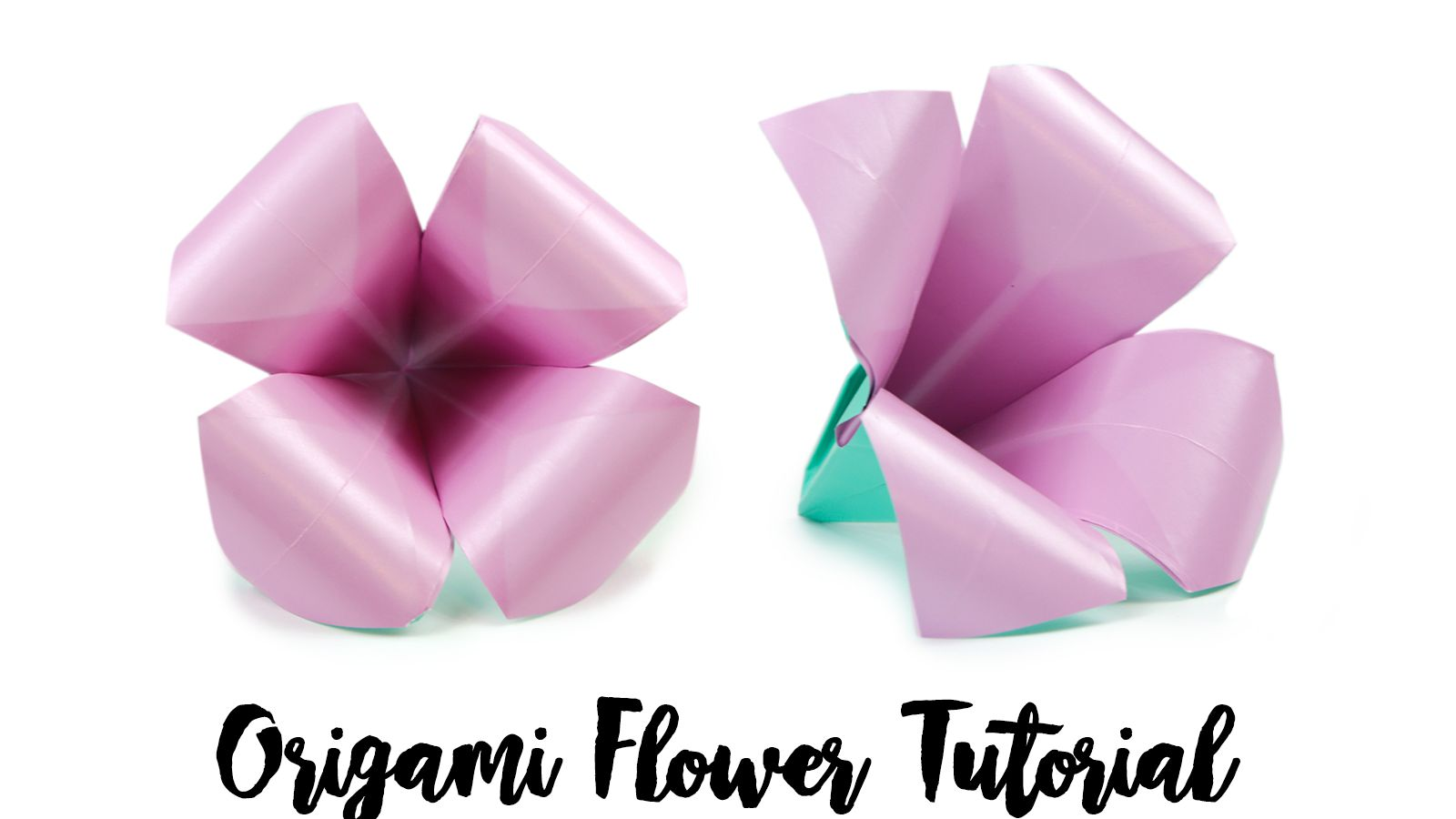 Step By Step Instructions How To Make Origami A Leaf Of Rose ... | 900x1600