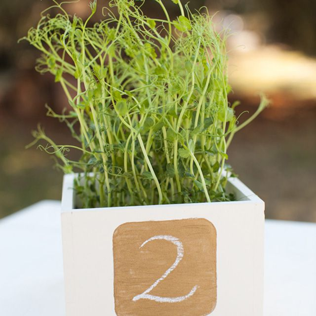 centerpiece table numbers