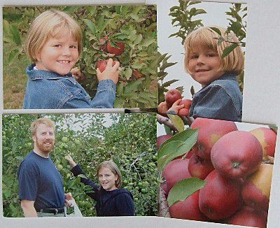 father and daughters apple picking