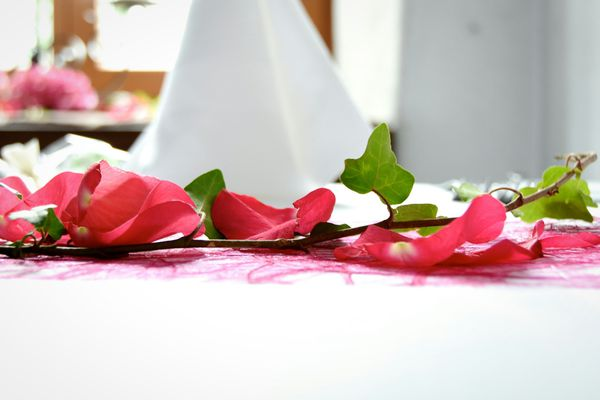 Close-Up Of Pink Rose Petals And Ivy On Table At Wedding Reception