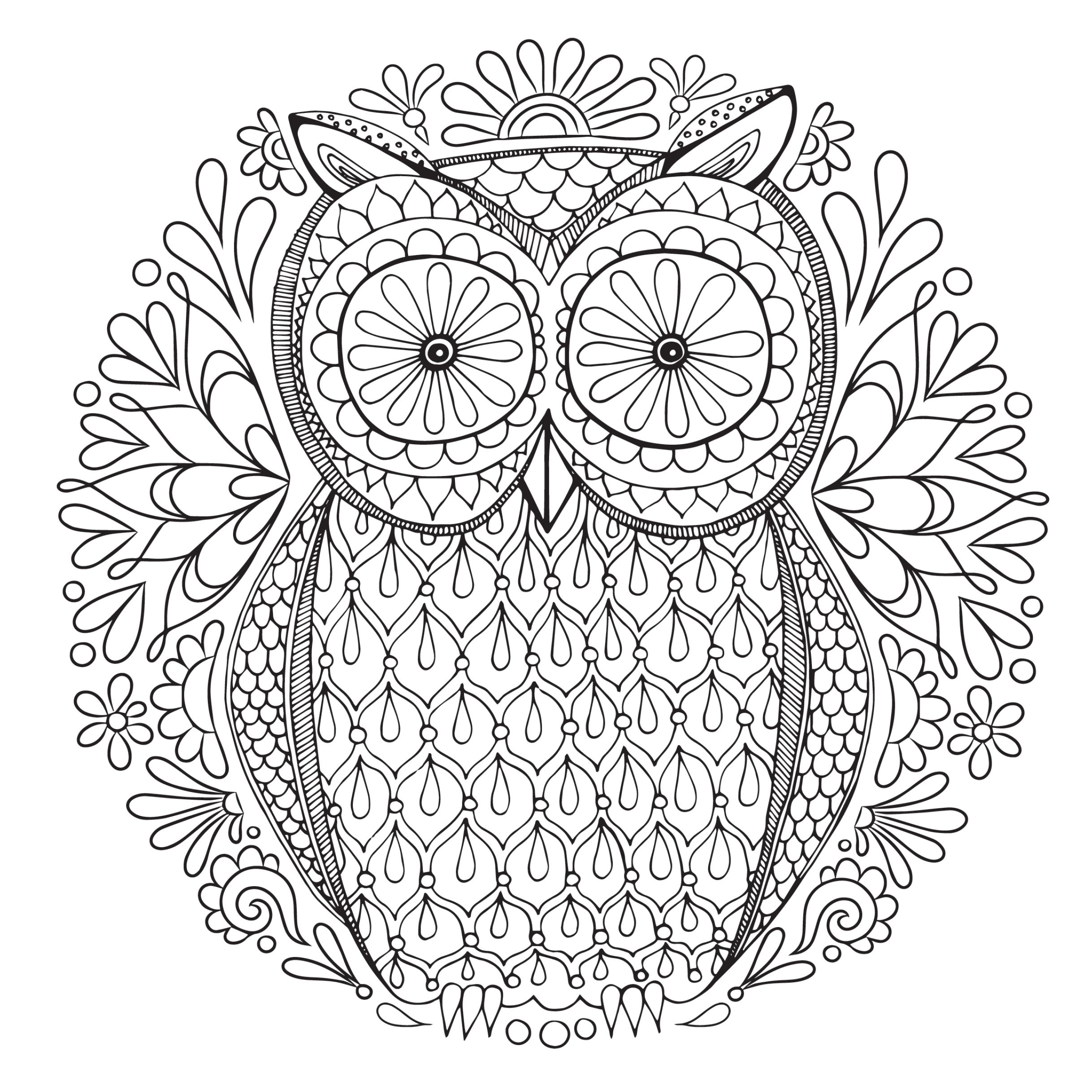 An owl adult coloring page.