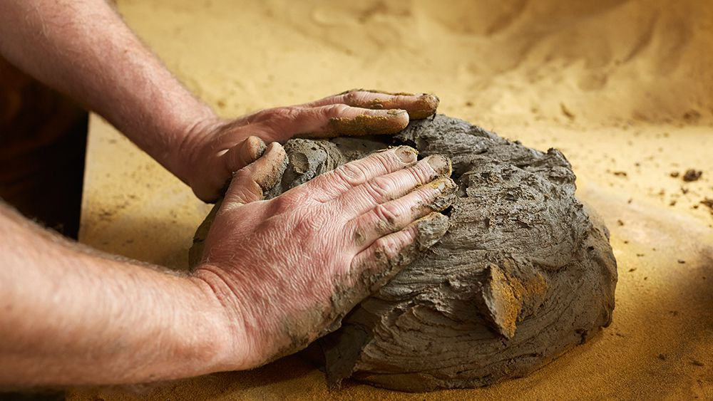 There are many different types of clay bodies you can work with. Pick which is best for you.