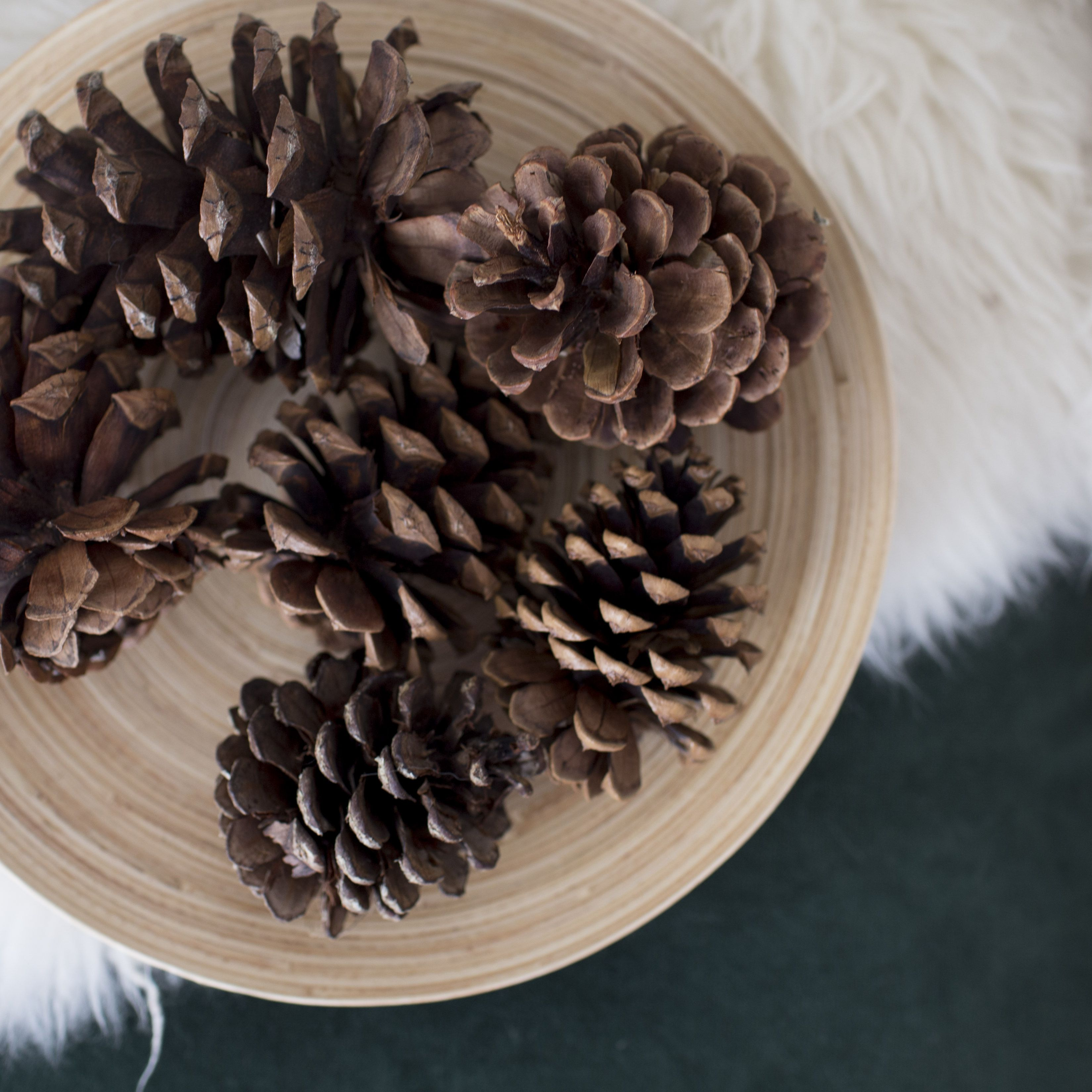 How To Make Scented Pine Cones With Essential Oils