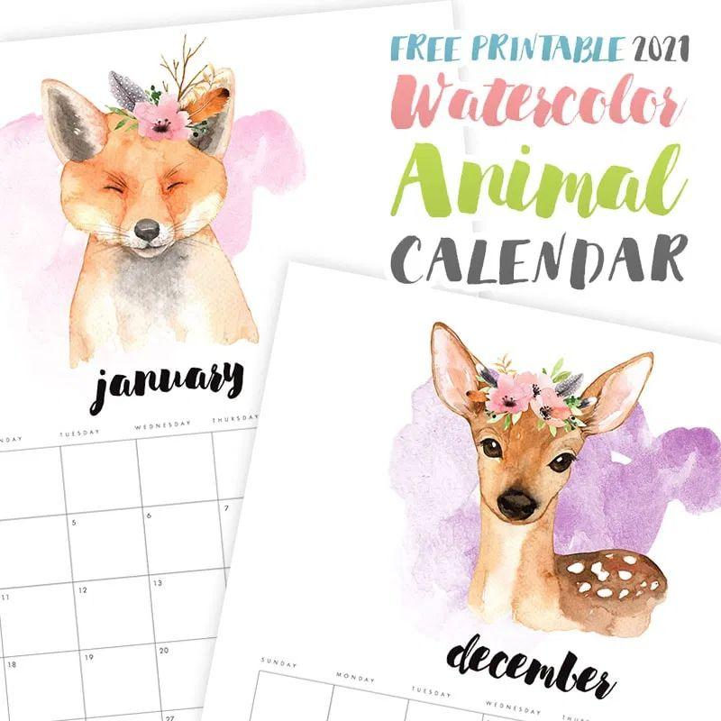 Watercolors of a fox and deer
