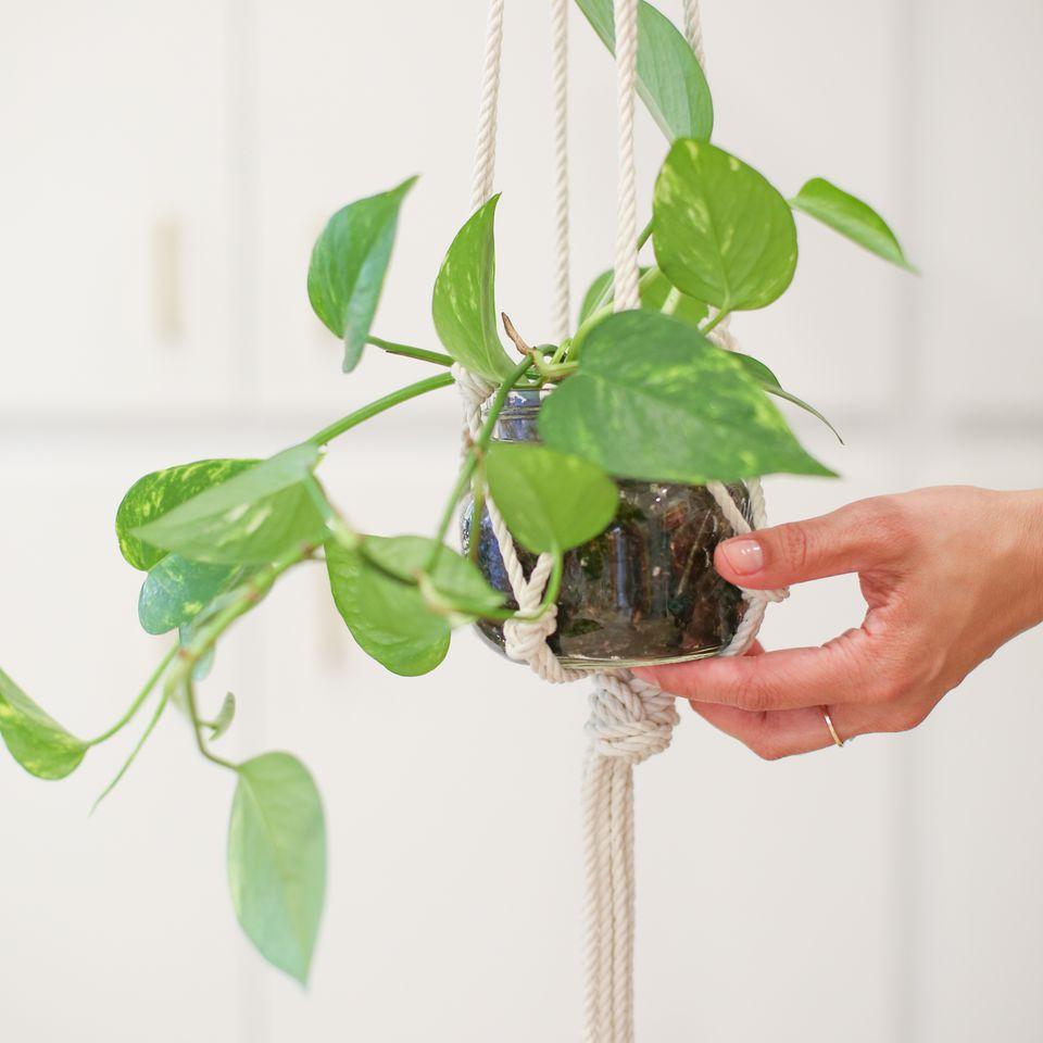 simple macrame plant holder tutorial