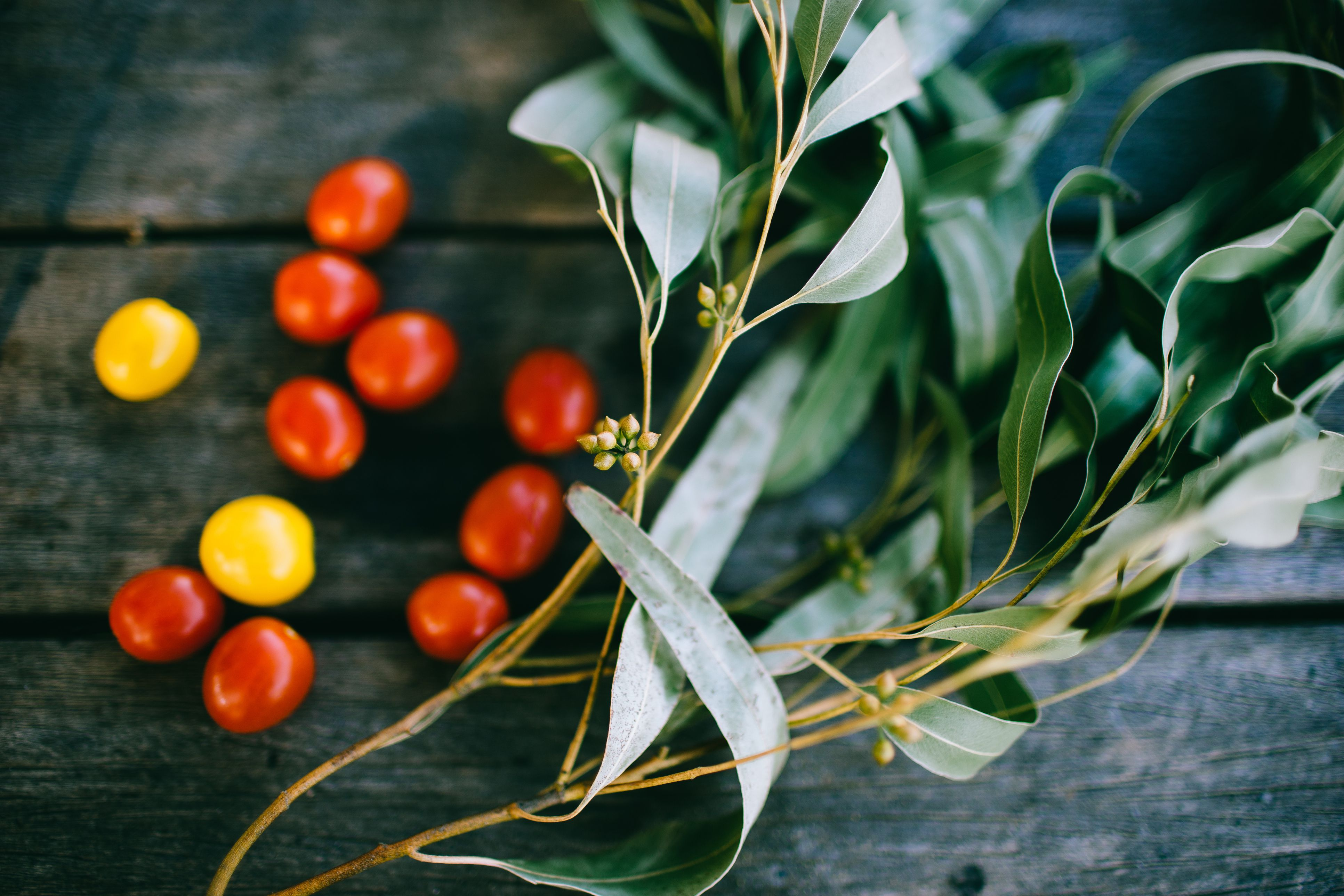 Eucalyptus leaves and cherry tomatoes on wooden table