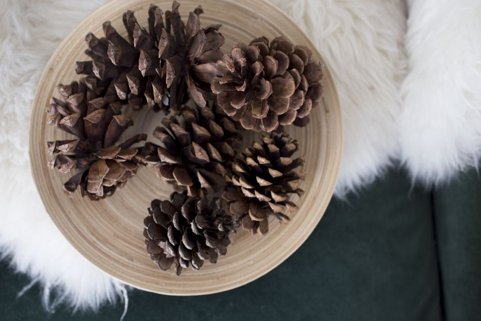 Scented pine cones with essential oils