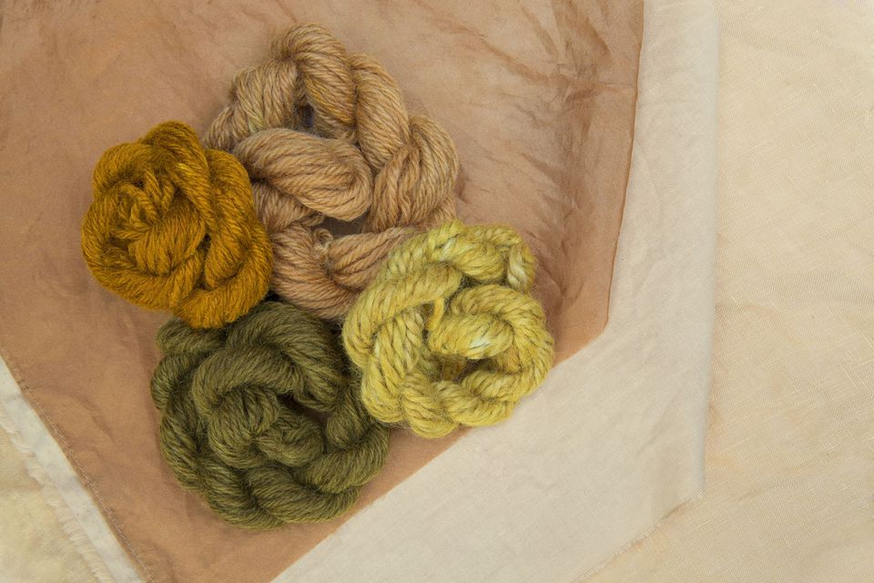 Four fibers and fabrics in green, brown, and yellow, dyed in an onion kin dyebath.
