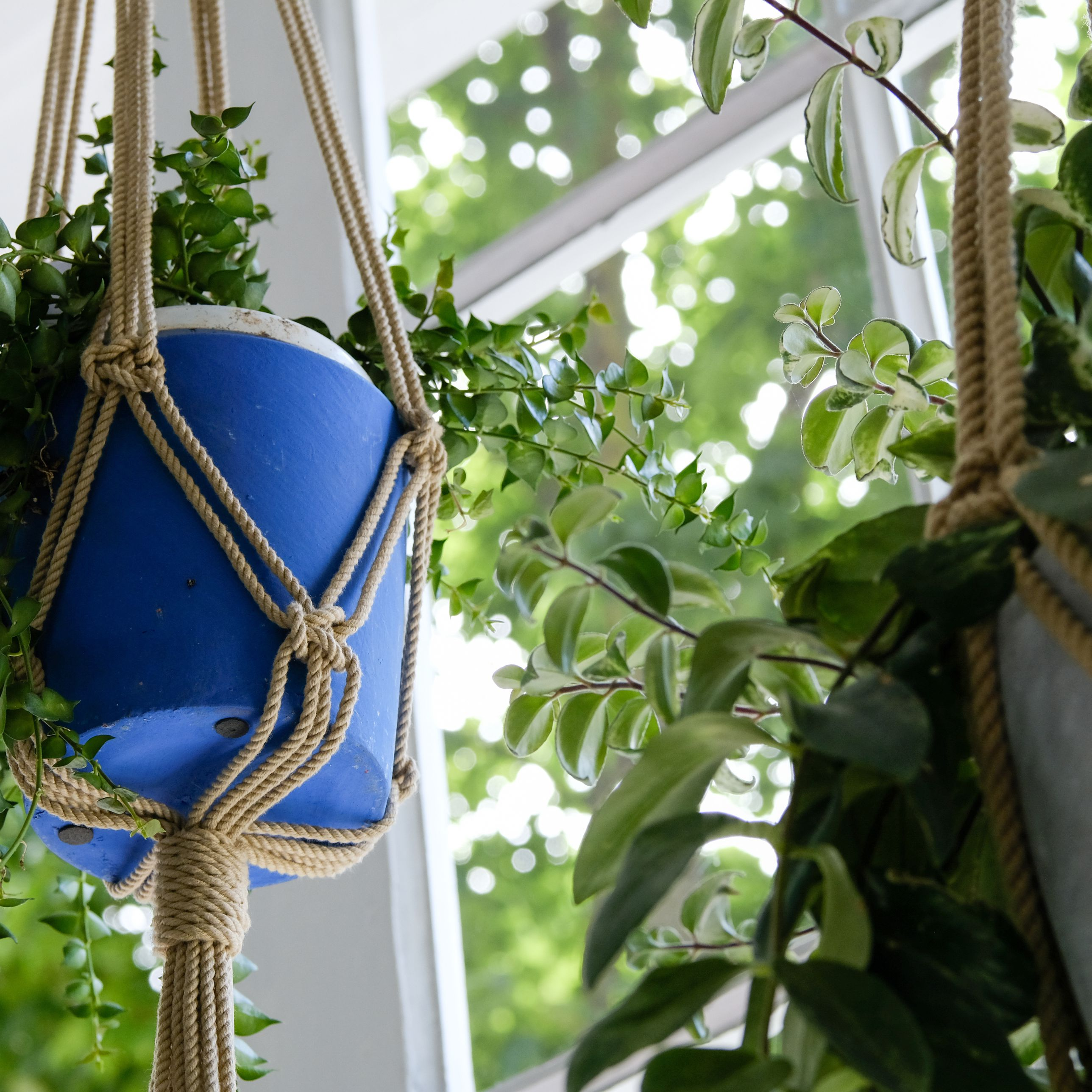 How To Make A Macrame Hanging Plant Holder