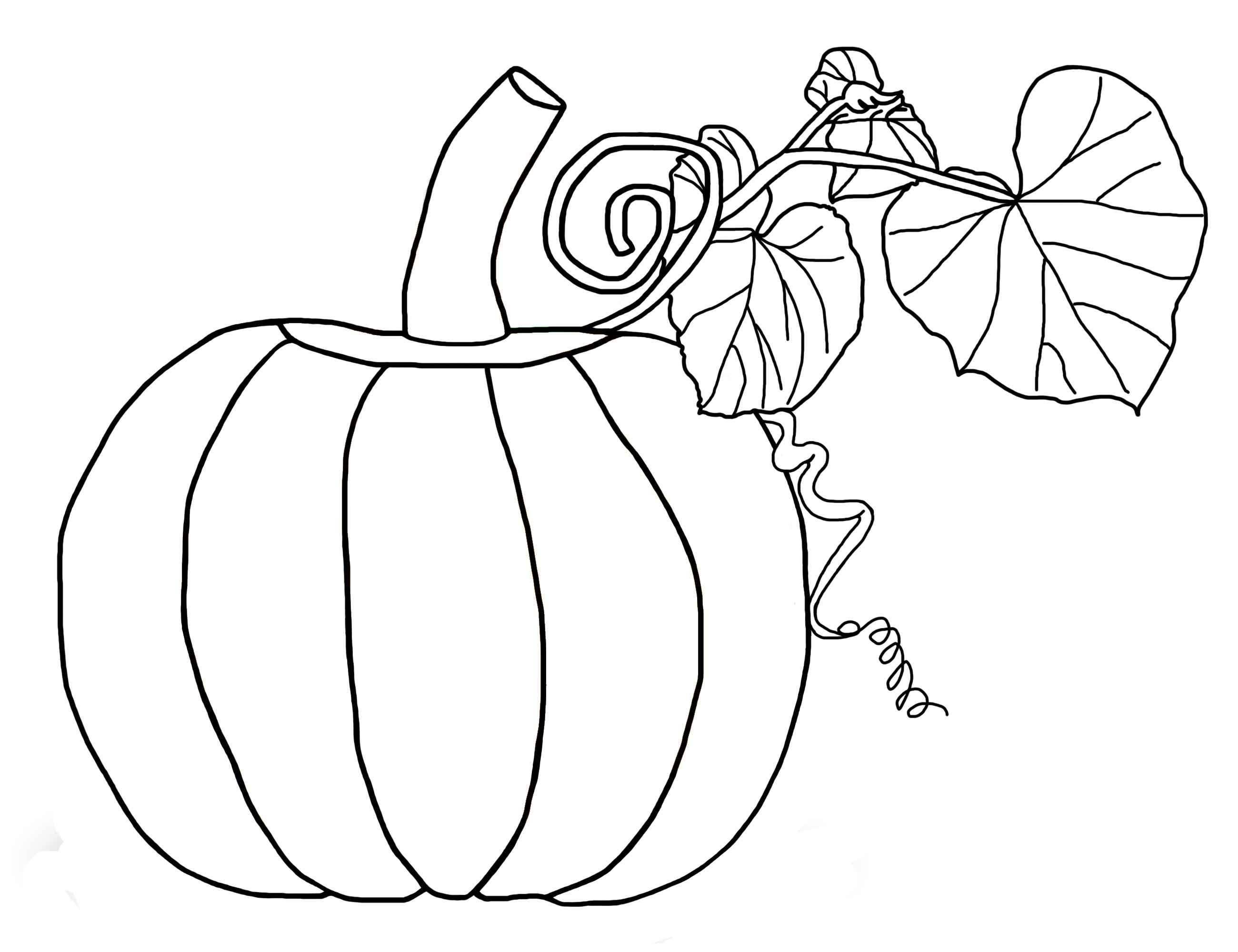 A pumpkin with vines and leaves