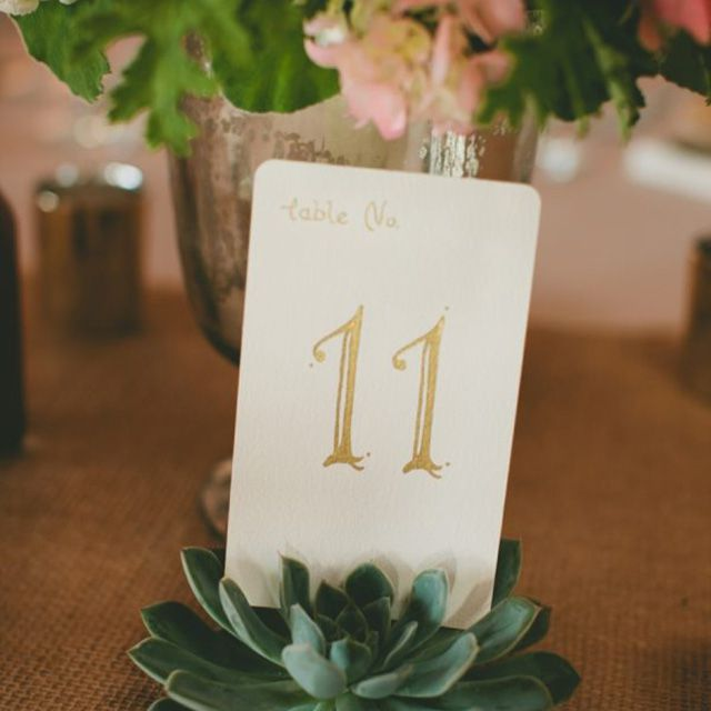 faux succulent table number holder