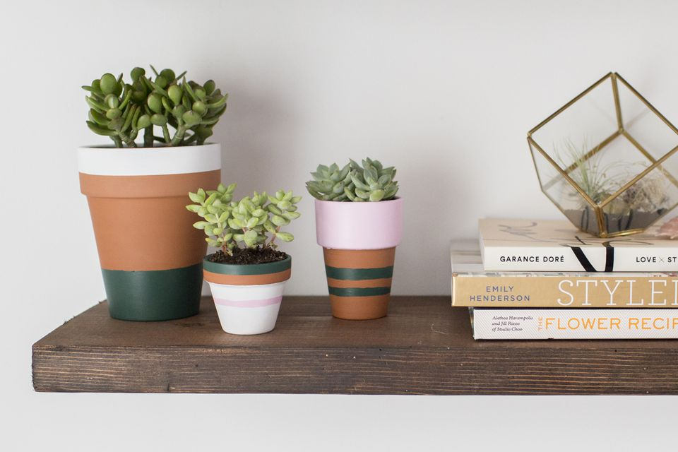 Painted to terracotta plant pots on a shelf