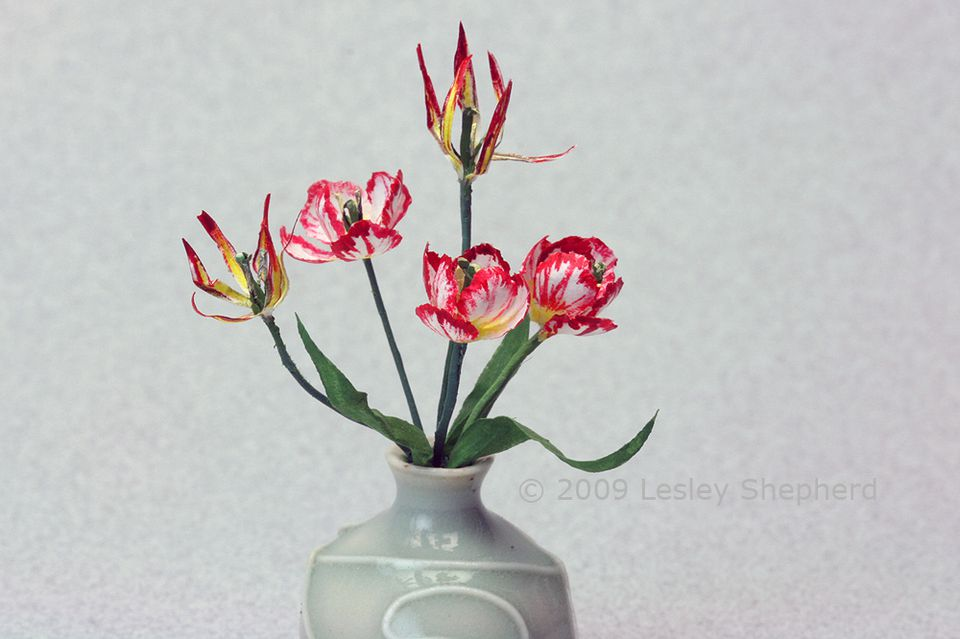 Tiny reproductions of rare tulips; viridiflora and Silver Standard in dolls house scale.