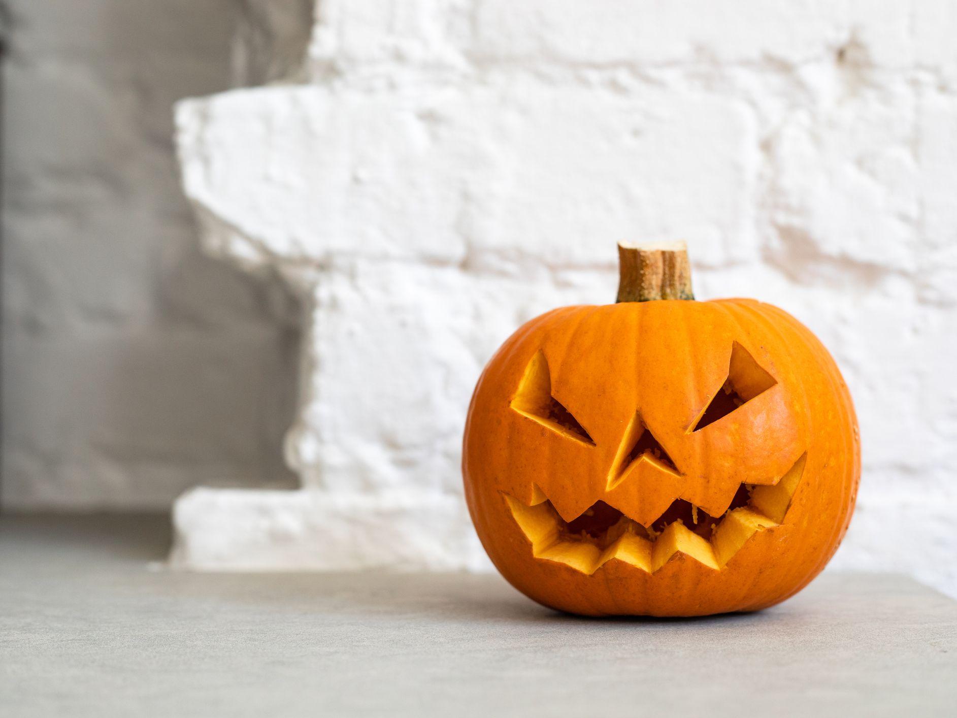 Download Halloween Pumpkin Sculptures Background