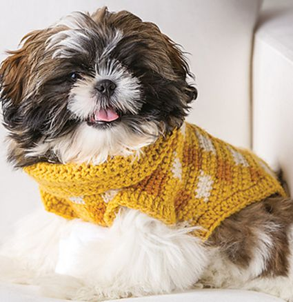Fluffy dog in a yellow gingham crochet sweater