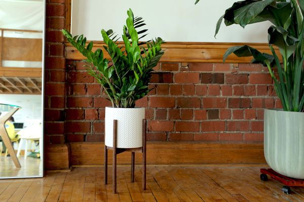 A wooden plant stand by a brick wall