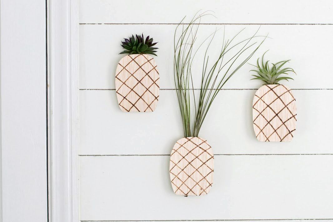 DIY Pineapple wall plants