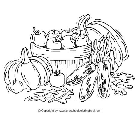 A Basket Full Of Apples Pumpkins And Corn Preschool Coloring Book
