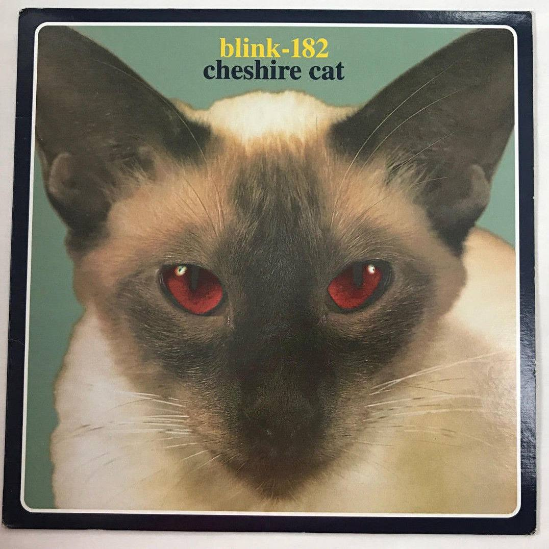 Blink-182 Cheshire Cat Album Rare Cover Art