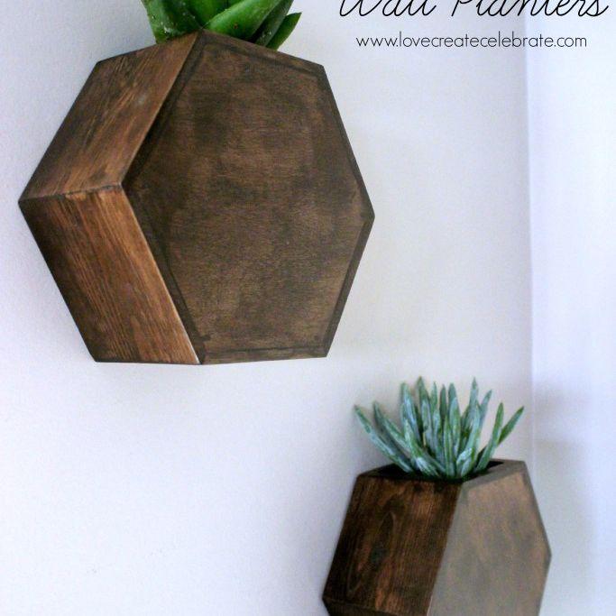 DIY Hexagon Wall Planter